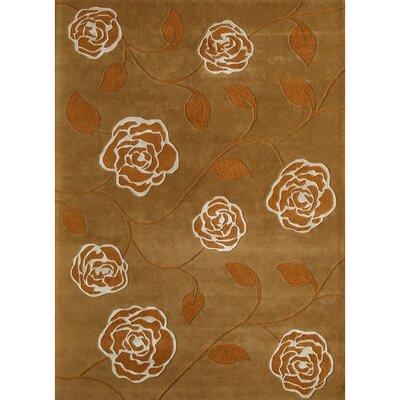 Hand-Woven Rust Area Rug Rug Size: 5 x 8