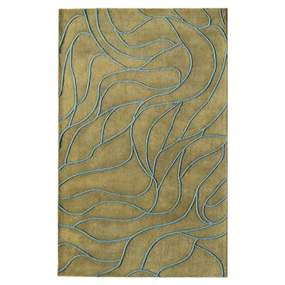 Hand-Woven Green Area Rug Rug Size: 7 x 9