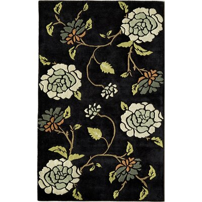 Hand-Woven Black Area Rug Rug Size: 16 x 23