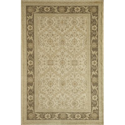 Cream/Brown Area Rug Rug Size: 53 x 710