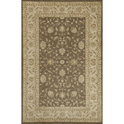 Brown Area Rug Rug Size: 53 x 710
