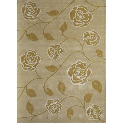 Hand-Woven Gold Area Rug Rug Size: 4 x 6