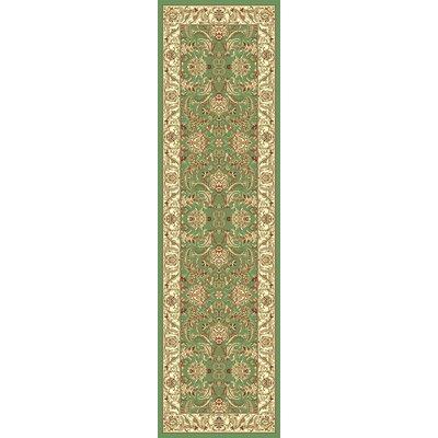Green Area Rug Rug Size: Runner 23 x 710
