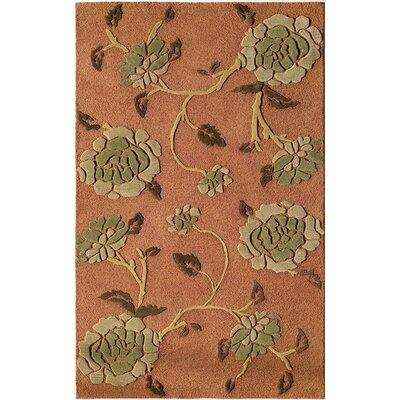 Hand-Woven Orange Area Rug Rug Size: 16 x 23