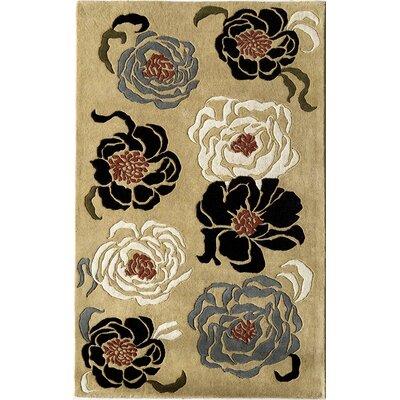 Hand-Woven Sand Area Rug Rug Size: 16 x 23