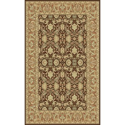 Brown Area Rug Rug Size: Oval 33 x 53