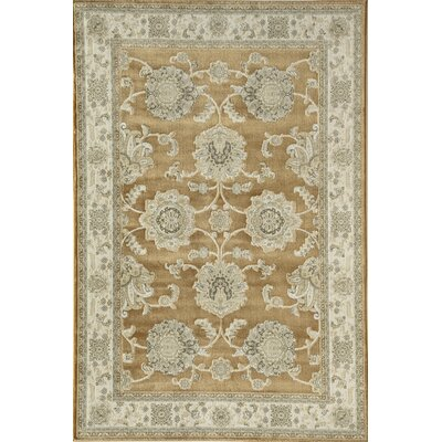 Gold Area Rug Rug Size: Runner 23 x 710