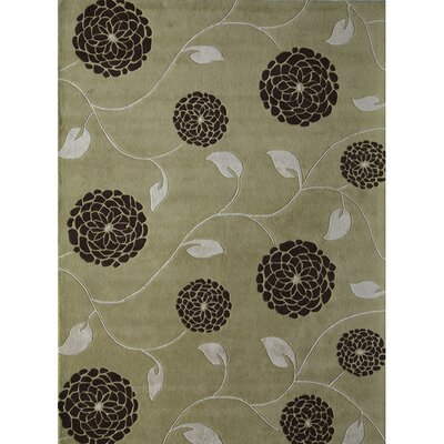 Hand-Woven Green Area Rug Rug Size: 4 x 6