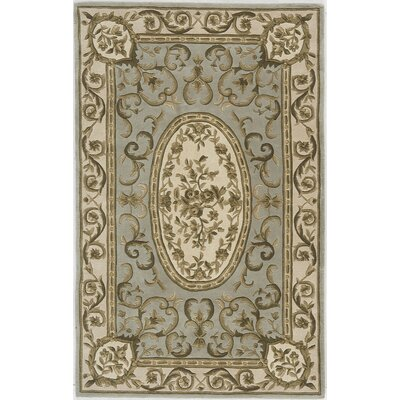 Hand-Woven Green Area Rug Rug Size: 36 x 56