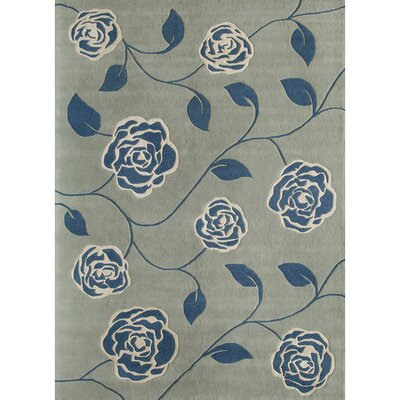 Hand-Woven Blue Area Rug Rug Size: 4 x 6