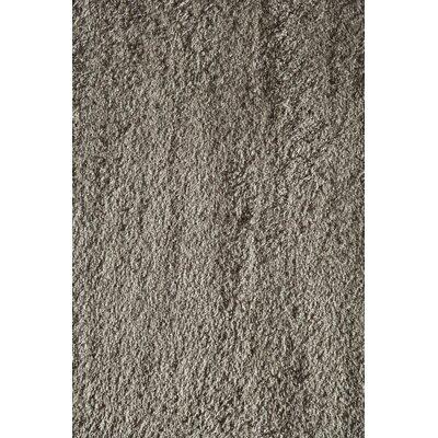 Gray Area Rug Rug Size: 710 x 1010
