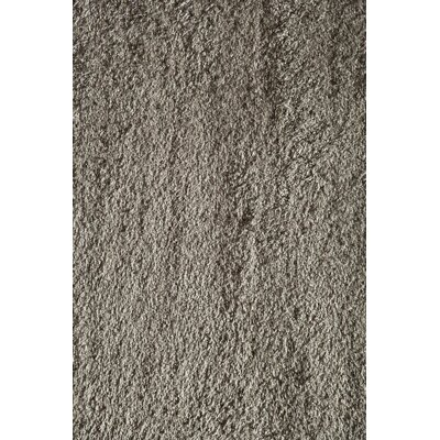 Gray Area Rug Rug Size: 67 x 96