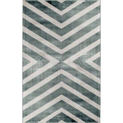 Grey Area Rug Rug Size: 34 x 47