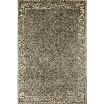 Gray Area Rug Rug Size: Rectangle 53 x 710