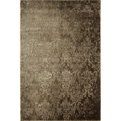 Tan Area Rug Rug Size: Rectangle 53 x 710