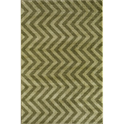 Green Area Rug Rug Size: Rectangle 53 x 710