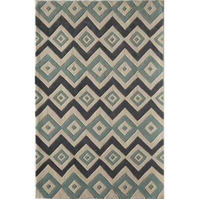 Hand-Woven Area Rug Rug Size: 76 x 96