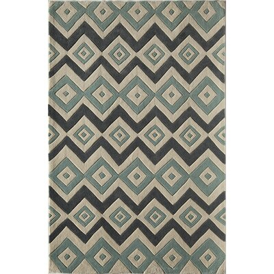 Hand-Woven Area Rug Rug Size: 16 x 23