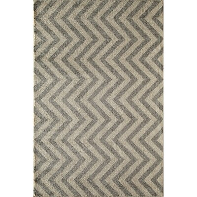 Slate Area Rug Rug Size: Rectangle 53 x 710