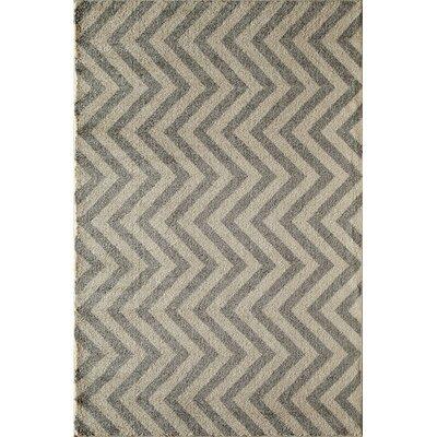 Slate Area Rug Rug Size: 53 x 710