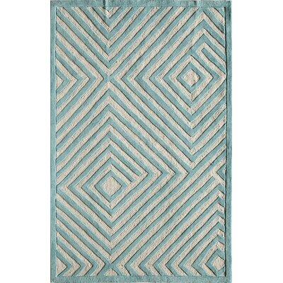 Hand-Woven Aqua Area Rug Rug Size: 16 x 23
