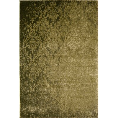 Olive Green Area Rug Rug Size: 710 x 1010