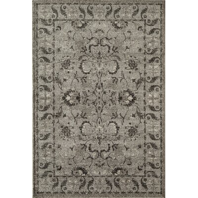 Slate Area Rug Rug Size: Rectangle 710 x 1010