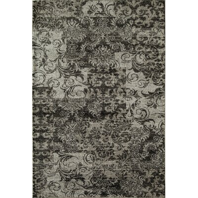 Charcoal Area Rug Rug Size: Runner 23 x 71