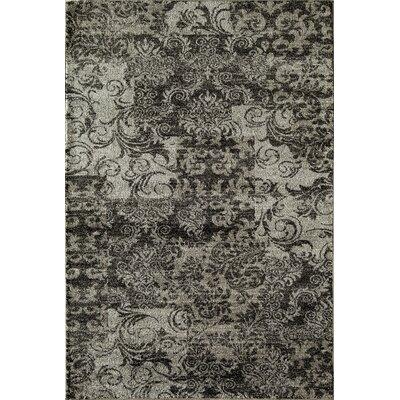 Charcoal Area Rug Rug Size: 5'3