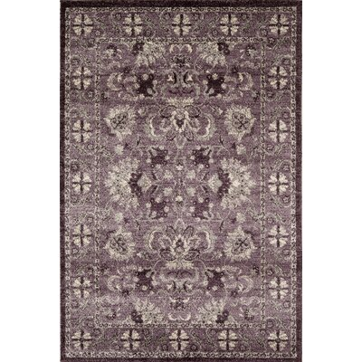 Lavender Area Rug Rug Size: Rectangle 53 x 710