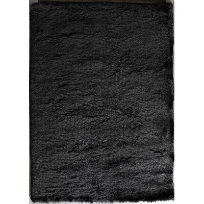 Steel Gray Area Rug Rug Size: Rectangle 5 x 76