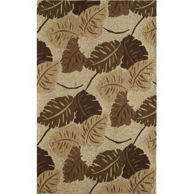 Tan Indoor/Outdoor Area Rug Rug Size: 76 x 96
