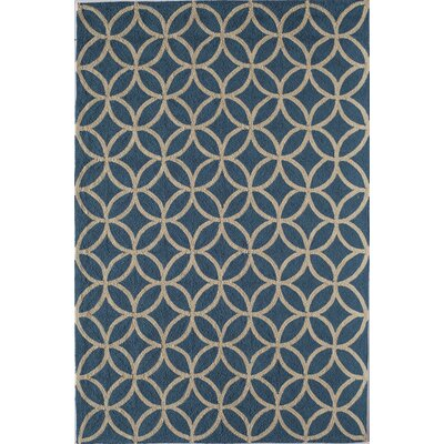 Light Blue Indoor/Outdoor Area Rug Rug Size: 26 x 36