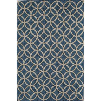 Light Blue Indoor/Outdoor Area Rug Rug Size: 76 x 96