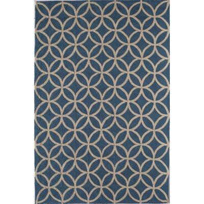 Light Blue Indoor/Outdoor Area Rug Rug Size: 5 x 76