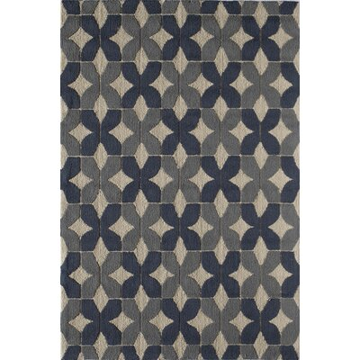 Navy Indoor/Outdoor Area Rug Rug Size: 76 x 96