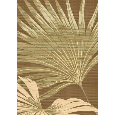 Ivory/Brown Area Rug Rug Size: Rectangle 53 x 710
