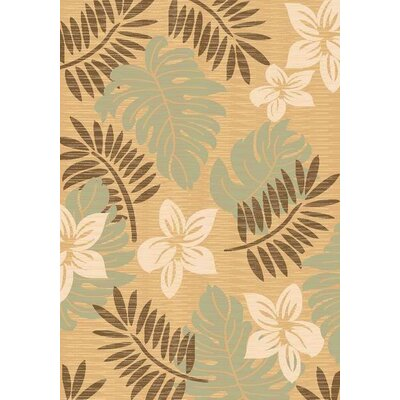 Taupe Area Rug Rug Size: 53 x 710