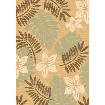 Taupe Area Rug Rug Size: 2 x 3