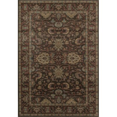 Aztec Brown Area Rug Rug Size: 710 x 1010