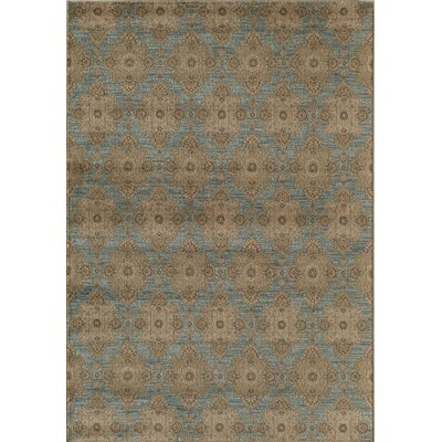 Light Blue/Gray Area Rug Rug Size: 53 x 710
