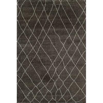 Brown Area Rug Rug Size: 710 x 1010