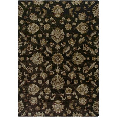 Brown Area Rug Rug Size: Runner 2'3