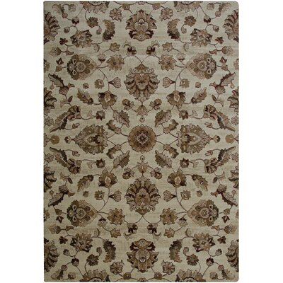 Ivory Area Rug Rug Size: Rectangle 92 x 126