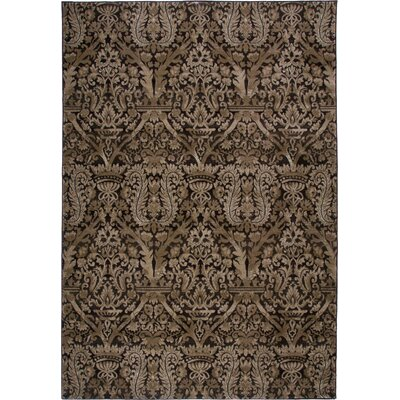 Brown Area Rug Rug Size: Rectangle 92 x 126