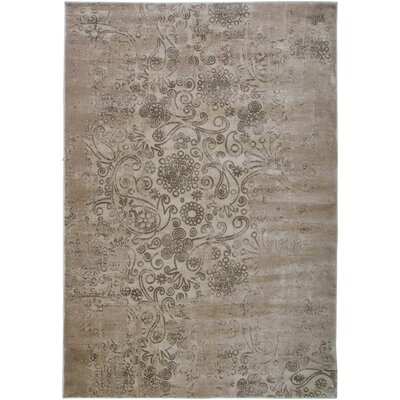Ivory Area Rug Rug Size: Rectangle 4 x 57