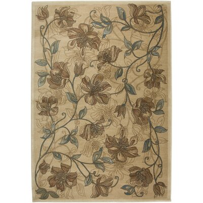 Hand-Woven Cream Area Rug Rug Size: Rectangle 92 x 126