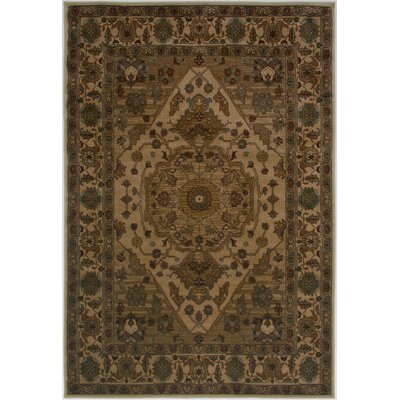 Ivory Area Rug Rug Size: Rectangle 67 x 96