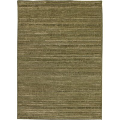 Hand-Woven Green Area Rug Rug Size: 9'10 x 12'10