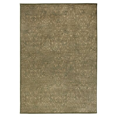 Hand-Woven Tan/Green Area Rug Rug Size: Runner 23 x 77